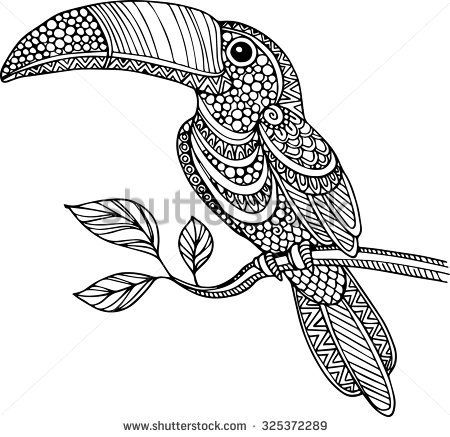 Hand Drawn Doodle Outline Ornate Toucan Illustration Decorated