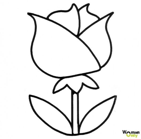 Dibujos De Flores Para Colorear E Imprimir Gratis (1)