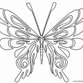 Dibujos De Mariposas Para Colorear E Imprimir Gratis