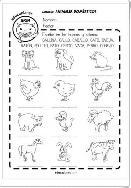 Animales Oviparos Y Mamiferos Preescolar