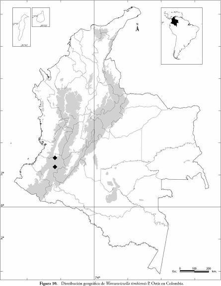 Mapa PolÍtico De Colombia Para Imprimir Y Colorear