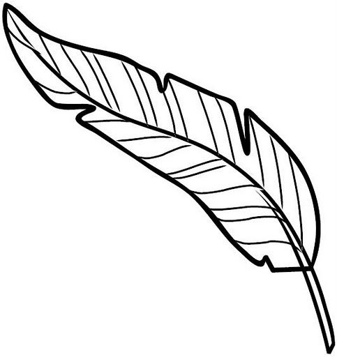Dibujos De Plumas