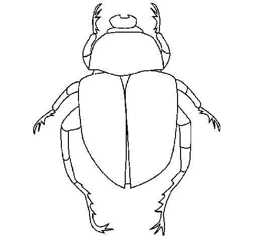 Escarabajo Para Colorear