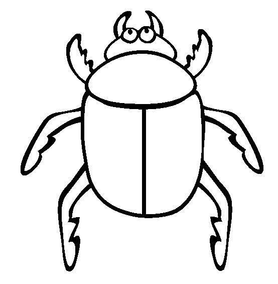Escarabajos Para Colorear 2020