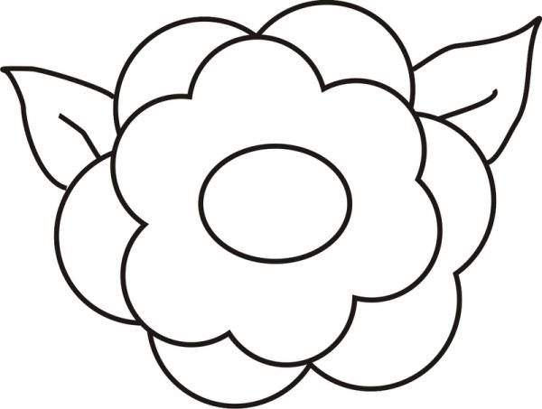 Flores Para Colorear Png 6 » Png Image