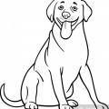 Imagenes De Perros Para Colorear Animados